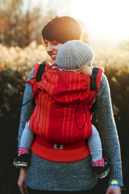 Little Frog Ergonomic Carrier - Carnelian 2